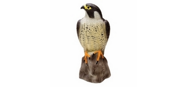 Falcon Decoy Bird Scarer